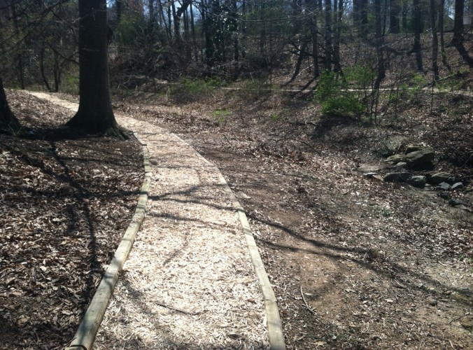 Finished Trail